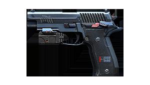 P228-Slate